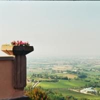 Balcone di Romagna Dettaglio - Andrea.andreani - Bertinoro (FC)
