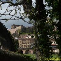 Castrocaro Terme-La Rocca-DSC 2164 - Flash2803 - Castrocaro Terme e Terra del Sole (FC)
