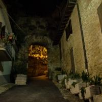 Castrocaro Terme-La Rocca-DSC 3076 - Flash2803 - Castrocaro Terme e Terra del Sole (FC)