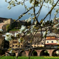 Castrocaro Terme-La Rocca-DSC 2166 - Flash2803 - Castrocaro Terme e Terra del Sole (FC)