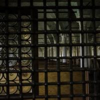 Sala lettura, finestra - Flash2803 - Cesena (FC)
