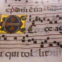 Manoscritto 6 - Boschetti marco 65 - Cesena (FC)