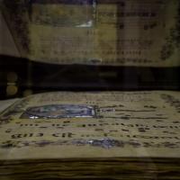 Libri antichi 1 - Flash2803 - Cesena (FC)