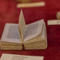 Mini libro - Boschetti marco 65 - Cesena (FC)