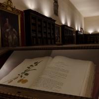 Dettaglio libro Biblioteca Malatestiana - Paolo Crociati - Cesena (FC)