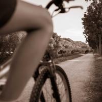 Ponte vecchio (passeggiata ciclo pedonale 7) - Boschetti marco 65 - Cesena (FC)