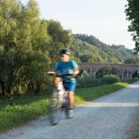 Ponte vecchio (passeggiata ciclo pedonale 3) - Boschetti marco 65 - Cesena (FC)