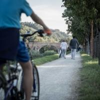 Ponte vecchio (passeggiata ciclo pedonale 9) - Boschetti marco 65 - Cesena (FC)