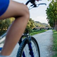 Ponte vecchio (passeggiata ciclo pedonale 6) - Boschetti marco 65 - Cesena (FC)