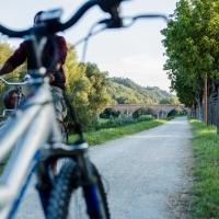 Ponte vecchio (passeggiata ciclo pedonale 5) - Boschetti marco 65 - Cesena (FC)