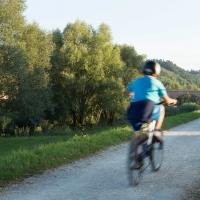 Ponte vecchio (passeggiata ciclo pedonale 4) - Boschetti marco 65 - Cesena (FC)