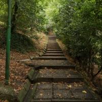 Parco della Rimembranza camminamenti - Boschetti marco 65 - Cesena (FC)
