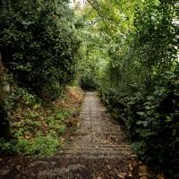 Parco della Rimembranza camminamenti 3 - Boschetti marco 65 - Cesena (FC)