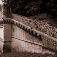 Parco della Rimembranza 1 - Boschetti marco 65 - Cesena (FC)