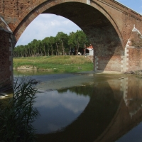 Ponte Clemente detto Vecchio - Cesena 8 - Diego Baglieri - Cesena (FC)