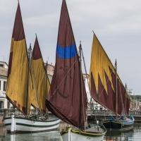 Museo galleggiante 5 - Boschetti marco 65 - Cesenatico (FC)