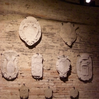 MAF Sezione medievale - Clawsb - Forlimpopoli (FC)