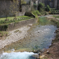 Particolare fiume Rabbi- Premilcuore 12.04.15 006 - Chiara Dobro - Premilcuore (FC)