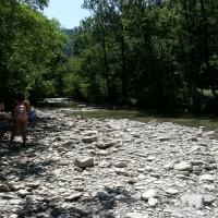Premilcuore Parco delle Foreste Casentinesi - Chiari86 - Premilcuore (FC)