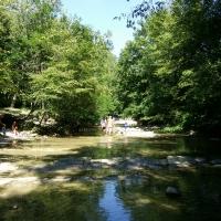 Premilcuore, Parco delle Foreste Casentinesi - Chiari86 - Premilcuore (FC)