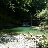 La natura del parco delle Foreste Casentinesi a Premilcuore - Chiari86 - Premilcuore (FC)