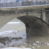 Particolare Ponte Vecchio - Chiara Dobro - Santa Sofia (FC)