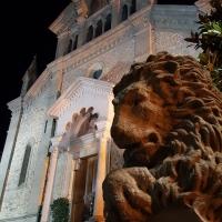 Nei dintorni del Palazzo 01 - Marco Musmeci - Bagno di Romagna (FC)
