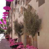 Palazzo del Capitano vestito di rosa per il 100° Giro d'Italia - Marco Musmeci - Bagno di Romagna (FC)