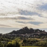 Panoramica sulla rocca - Boschettim65 - Bertinoro (FC)