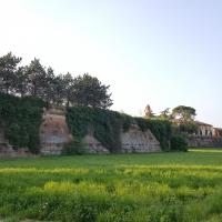 """Studi in preparazione del documentario """"Romagna toscana"""" 21 - Marco Musmeci - Castrocaro Terme e Terra del Sole (FC)"""