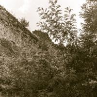La rocca di Castrocaro da dietro-2 - Massimo Saviotti - Castrocaro Terme e Terra del Sole (FC)