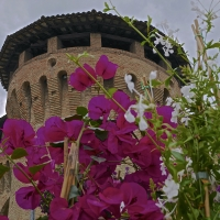 La torre della rocca - Caba2011 - Forlimpopoli (FC)
