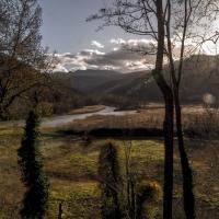 Reeds lake-29 - Massimo Saviotti - Sarsina (FC)