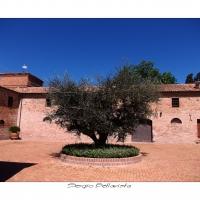 Interno del Castello di Ribano - Sergio bellavista - Savignano sul Rubicone (FC)
