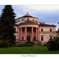 P1170608-608 - Sergio bellavista - Savignano sul Rubicone (FC)