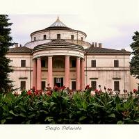 P1170602-602 - Sergio bellavista - Savignano sul Rubicone (FC)