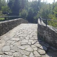 Il Ponte Romano 07 - Marco Musmeci - Verghereto (FC)