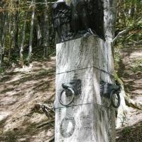 Particolare Monumento sorgente del Tevere - Boschetti marco 65 - Verghereto (FC)