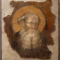 Augustinus, testa di santo, xiv secolo, da s.m. assunta in laterano (o in schiavonia) a forlì - Sailko - Forlì (FC)