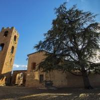 Castello Malatestiano sito in Longiano - Cecco93 - Longiano (FC)