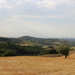 Castello di Teodorano - Panorama con scorcio di Teodorano foto di: Serrale88 - Wiki Loves Monuments 2013
