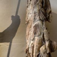5 - SARSINA Museo - Moreno Diana - Sarsina (FC)