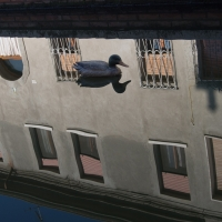 Comacchio (FE), centro storico 10 - Luca Zampini - Comacchio (FE)