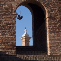 Trepponti, Comacchio (FE) 2 - Luca Zampini - Comacchio (FE)