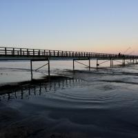 Gli ultimi pescatori - Marianna57 - Comacchio (FE)