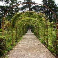 Palazzo Costabili detto di Ludovico il Moro - Passeggiata in giardino - Andrea Comisi - Ferrara (FE)
