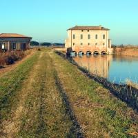 Emilia-Romagna Fe Goro Torre Palù - Biancamaria Rizzoli - Goro (FE)