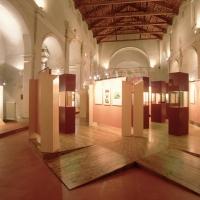 Museo Civico. Interno - Samaritani - Argenta (FE)