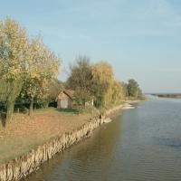 oasi di campotto - samaritani - Argenta (FE)