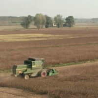 Lavori agricoli - Samaitani - Argenta (FE)